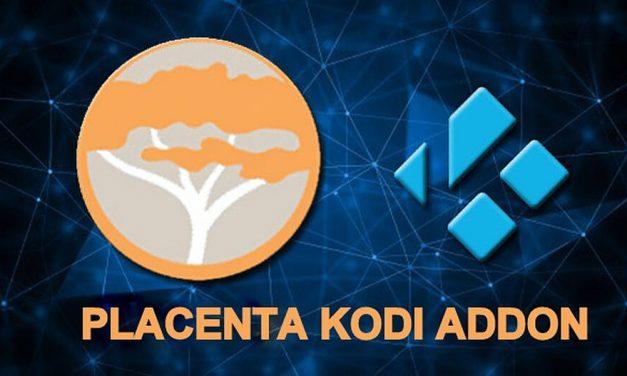 How to Install Placenta Kodi Addon on Leia 18.5