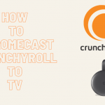 How to Chromecast Crunchyroll Using Smartphone & PC