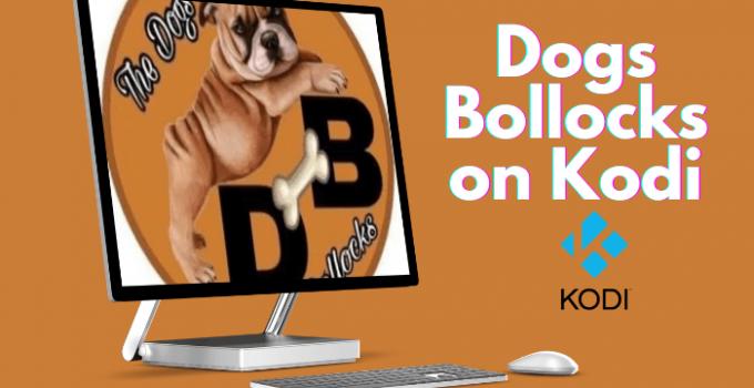 How to Install The Dogs Bollocks on Kodi / Firestick