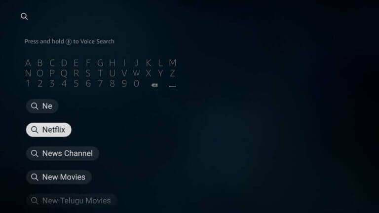 type Netflix into the search box